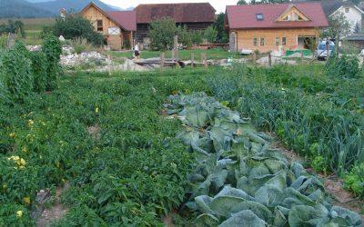 Naravi prijazni vrtovi – pomen in načini sonaravnega vrtnarjenja za ohranjanje biotske pestrosti, Hotemaže, 27.5.2020 ob 17h, brezplačno