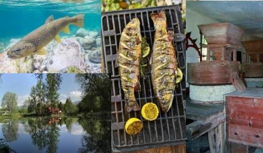 Ribja kulturna dediščina in ribištvo na vodnih območjih občine Naklo & spoznavanje ribje kulinarike, 20.6.2020
